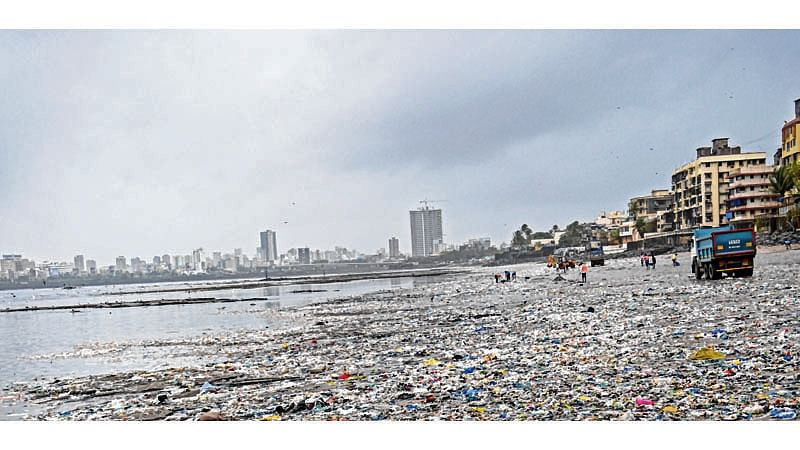 Mumbai: BMC to provide Rs 1.39 cr makeover for Mahim beach to attract visitor
