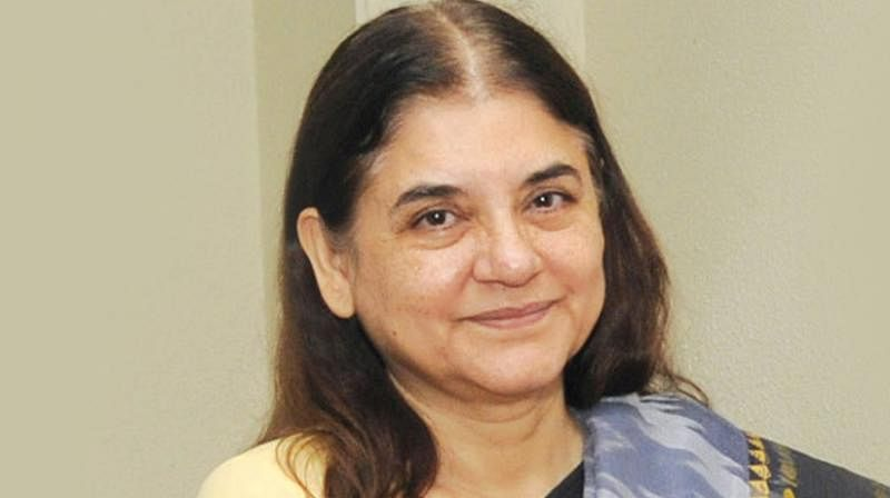 Maneka Gandhi will give grades to voters, in 'D' category you get just crumbs