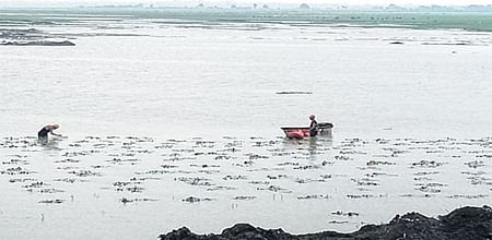 Indore: 97 industrial units polluting Kanh river on radar