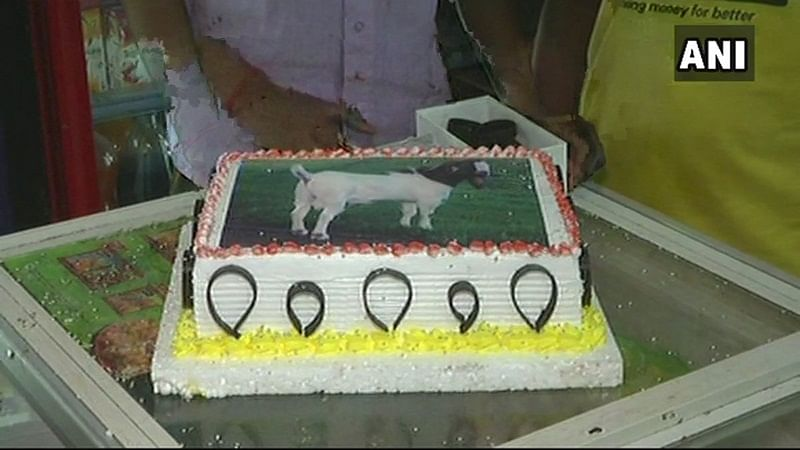 Bakri Eid! Cut cake baked in the shape of a goat: RSS-affiliated Muslim outfit