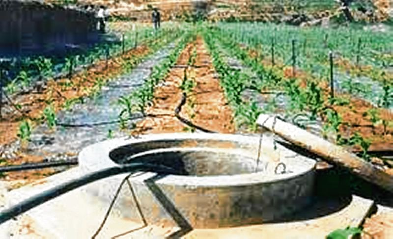 Scanty rainfall hits water conservation project in Beed