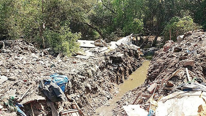 Mumbai: Authorities turn blind eye as mass debris dumping goes on in mangrove areas