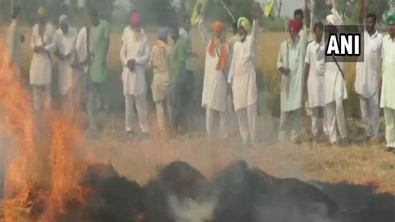 """Air pollution: """"Q"""" of life & death in Delhi-NCR, says SC; orders fin support to farmers"""