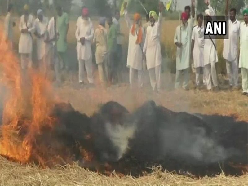 Punjab warns farmers on stubble burning