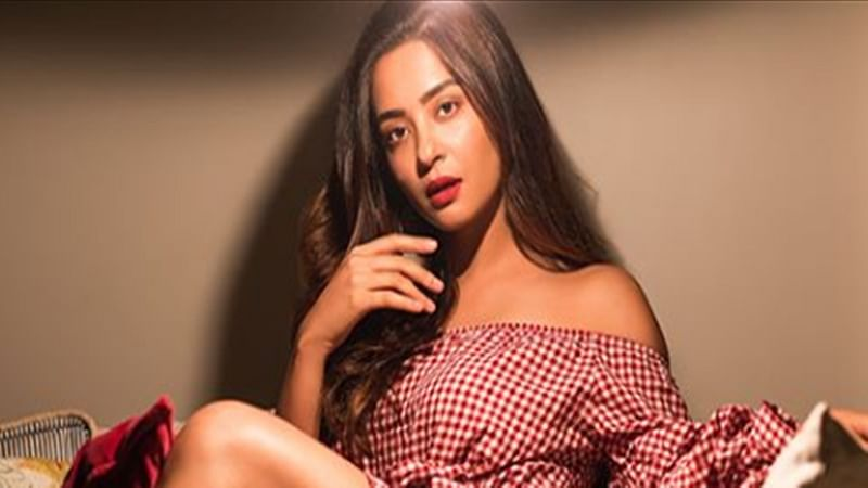 'Hate Story 2' star Surveen Chawla announces her pregnancy