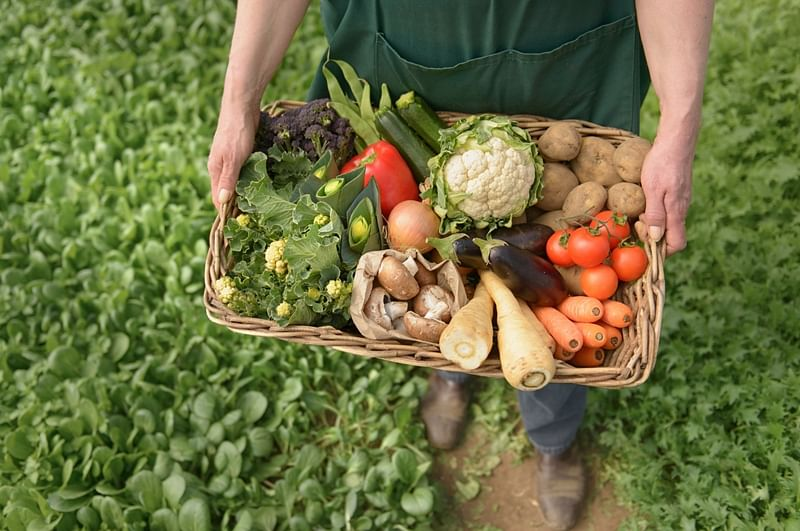 Food for thought! Is paying extra money for organic produce really worth it?