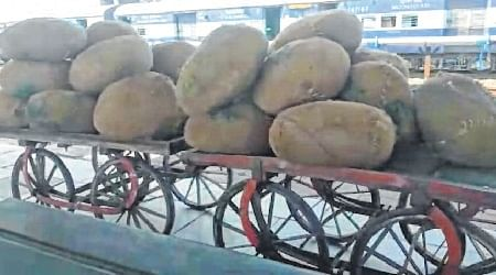 Indore: 1000 kg spurious mawa seized at railway station