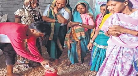 Bhopal: On self-reliance path, tribal women raise Kadaknath