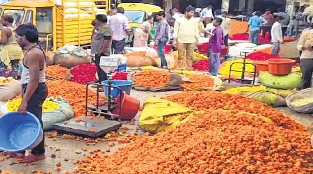 Indore: Poll time was bloom time for flower growers