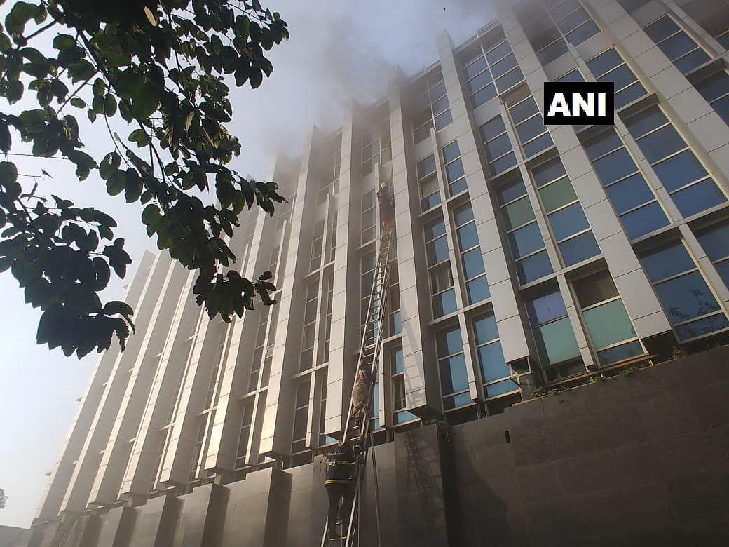 Flashback 2018: Tigress Avni, plastic ban, fires hogged limelight in Maharashtra