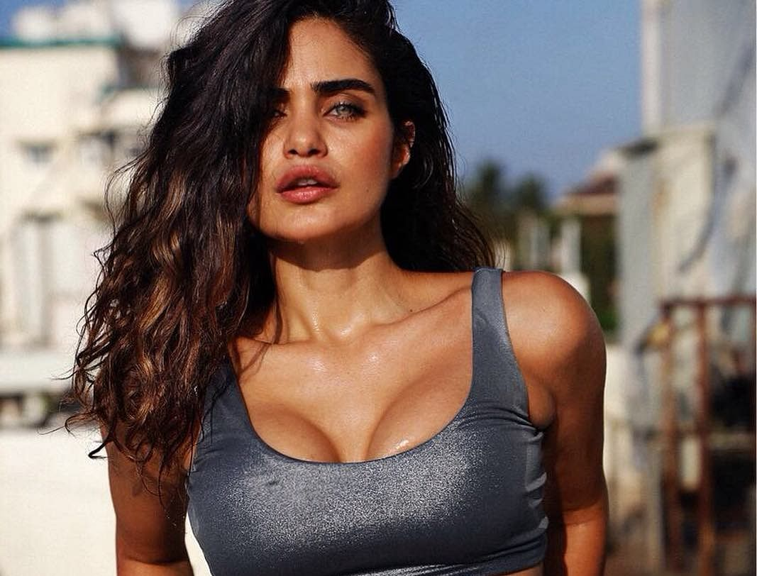 Arjun Rampal's rumoured girlfriend Gabriella Demetriades didn't enjoy working in Bollywood; find out why