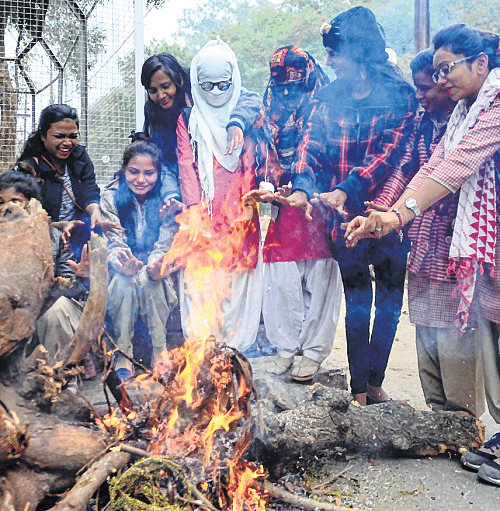 Bhopal: Rain-hail lash many dists, fog envelops state capital