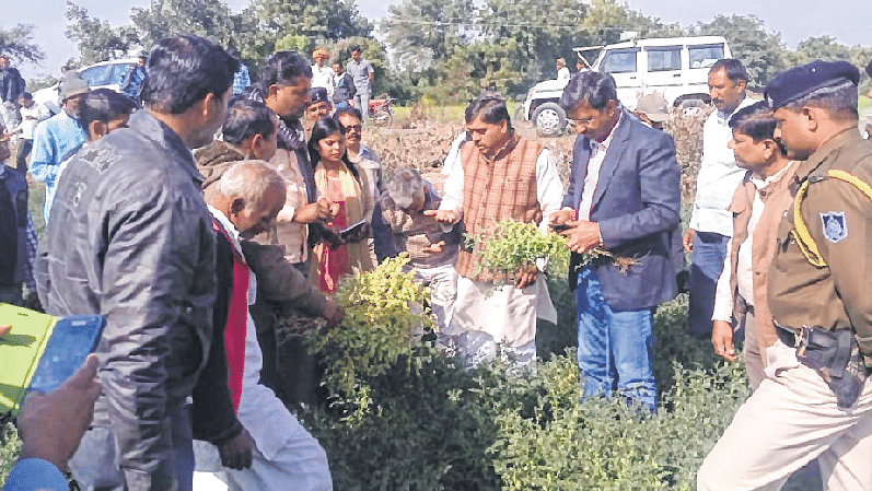 Ujjain: Collector Singh inspects  Mahidpur frost-hit areas