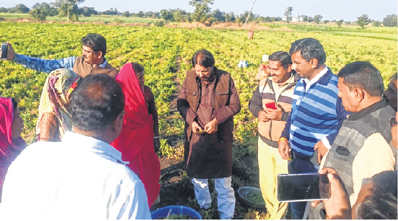 Ujjain: MLA, collector inspect farms affected by frost