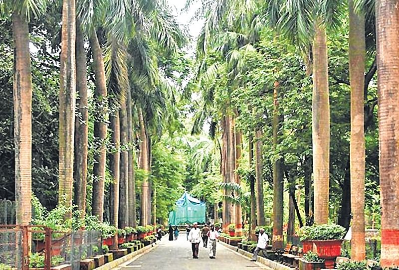 Indore: Makeover, Tyres find new use at city zoo
