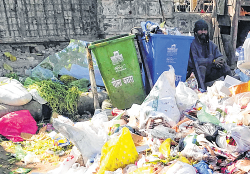 Bhopal: Trash starts piling up thanks to post survey apathy of civic body