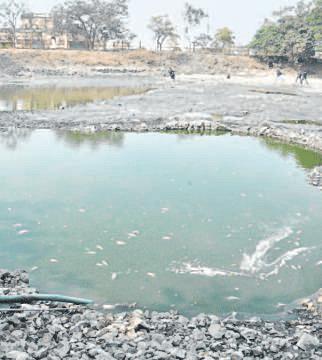 Indore: Something fishy killing fish