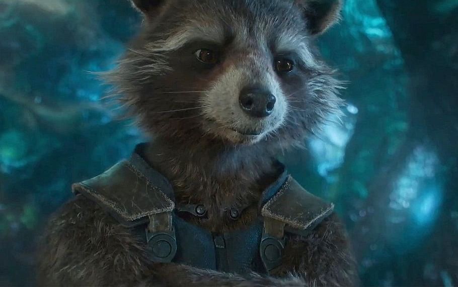 Oreo the Raccoon, model for 'Guardians of the Galaxy' character Rocket dies at age 10