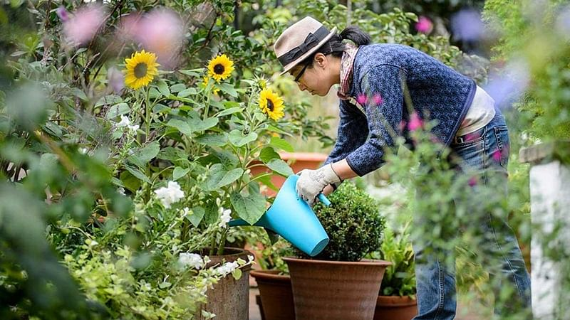 Ladies, gardening can keep your heart healthy
