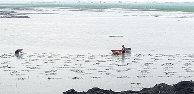 Bhopal: Upper Lake to get walking pathway