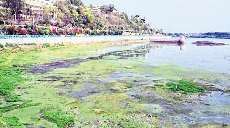 Bhopal: Receding water level in Upper Lake concerns people