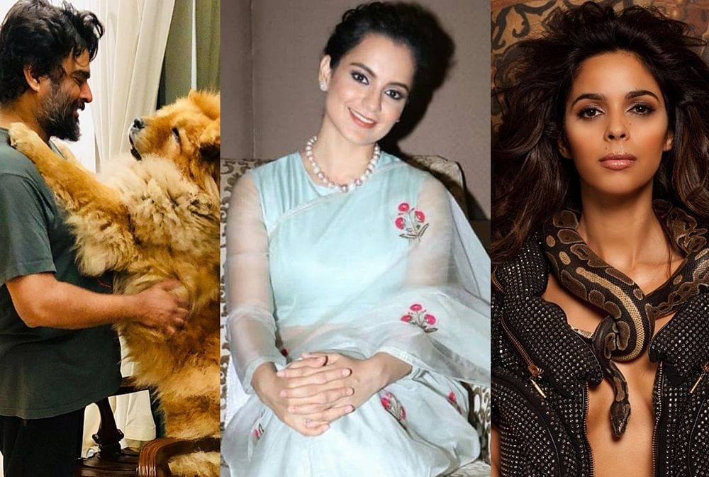 World Health Day 2019: 10 Hot Bollywood celebs who are vegan