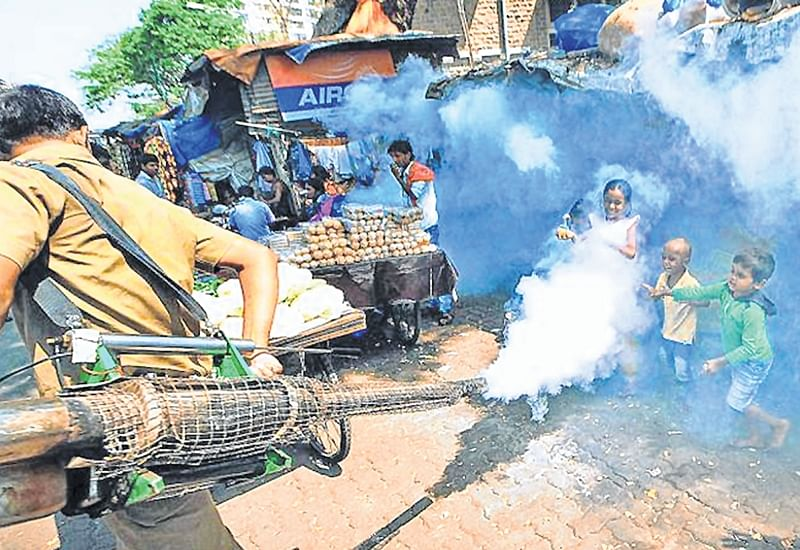 Mumbai: BMC mulls outsourcing pest control work, will spend Rs 92 lakh this year