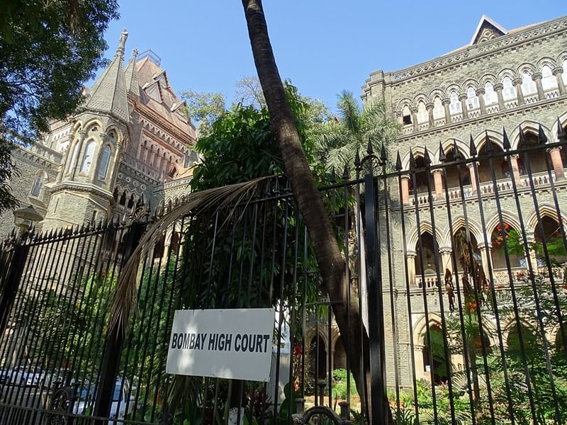 Give 10 acres land to girl: Bombay High Court to lawyer who married a minor