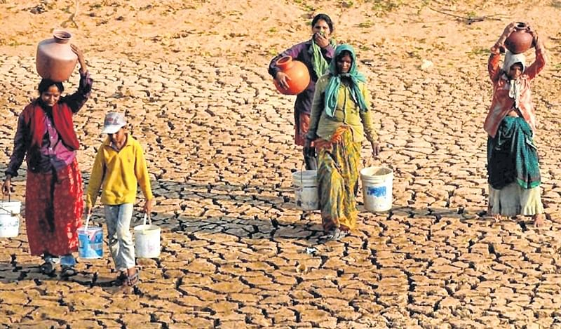 Bombay High Court directs Maharashtra government to spell out plans to tackle droughts