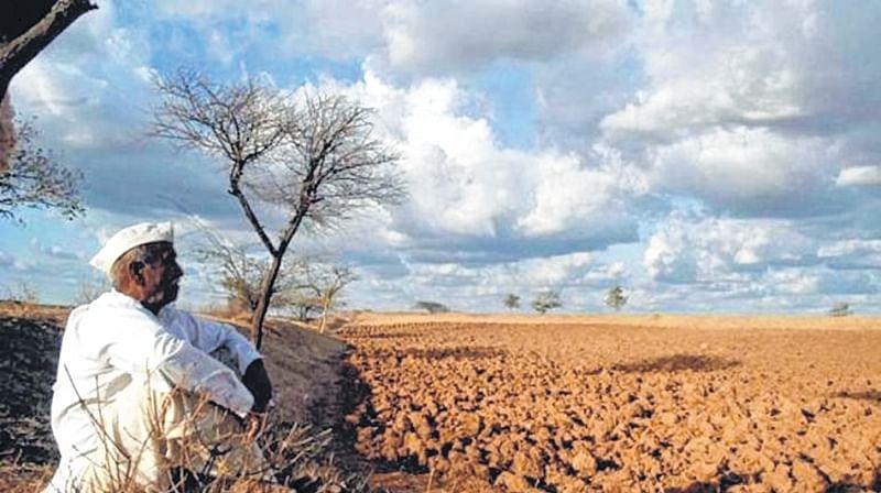 Maharashtra leaders embark on drought tourism