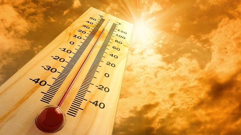 Maharashtra: 303 people admitted to hospitals for heat-related problems, IMD predicts severe heatwave till May 8