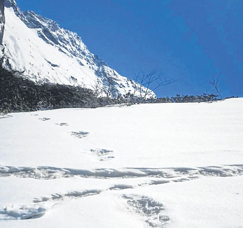 Army claims 'Yeti' footprints found by its expedition team, releases pictures
