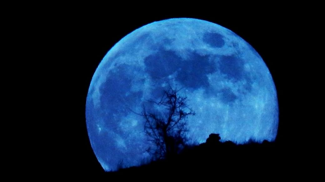 The Moon of August 22 is a Blue Moon: School Megamart 2021