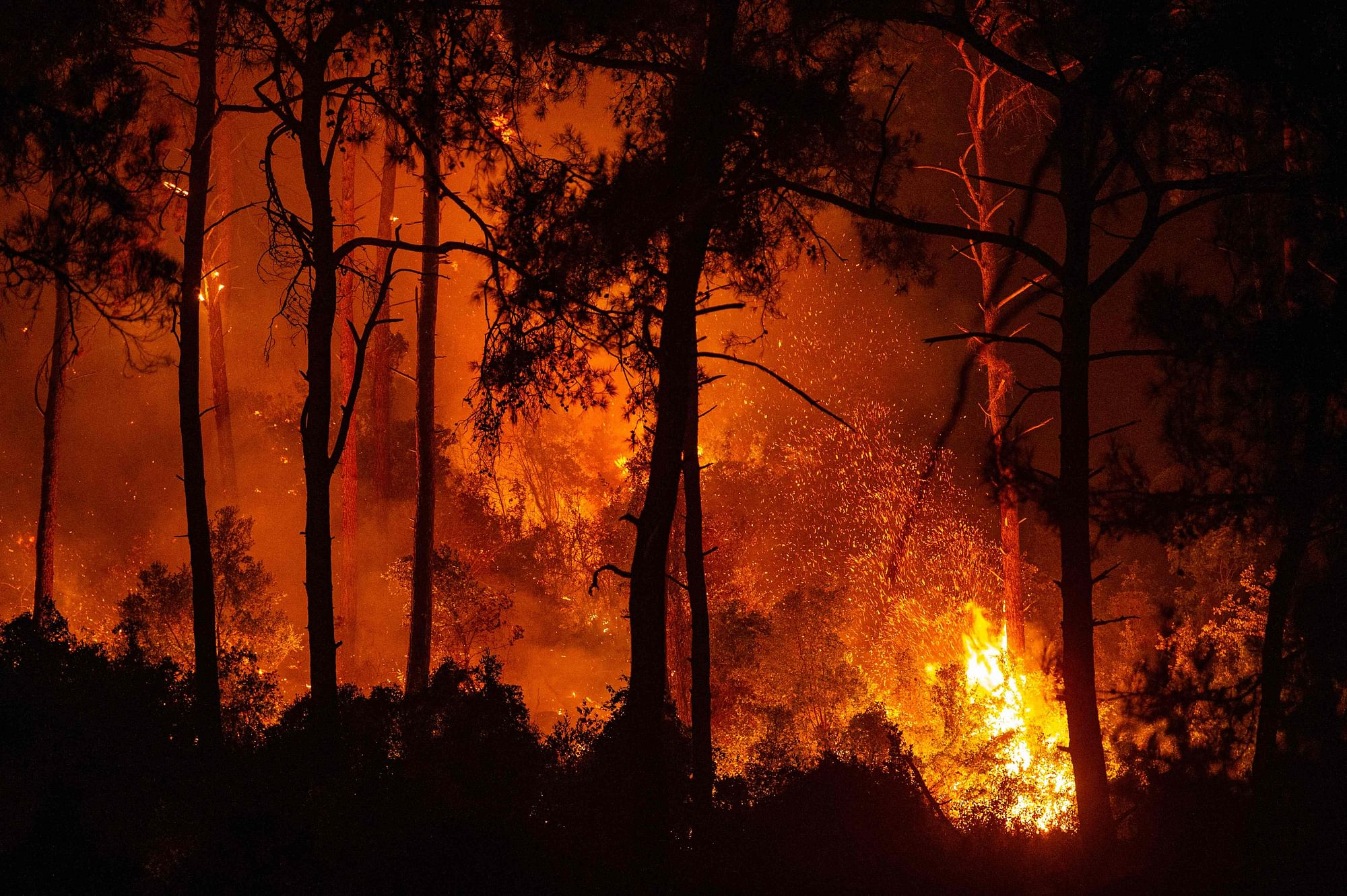 Turkey battles wildfires for 6th day, EU to send planes