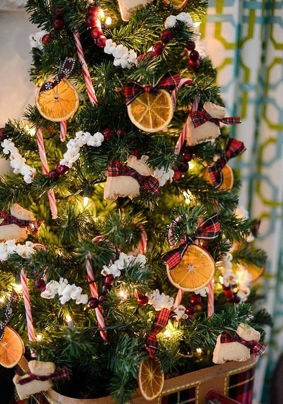 Tree decorated with dried oranges, popcorn, cranberries and cookies.