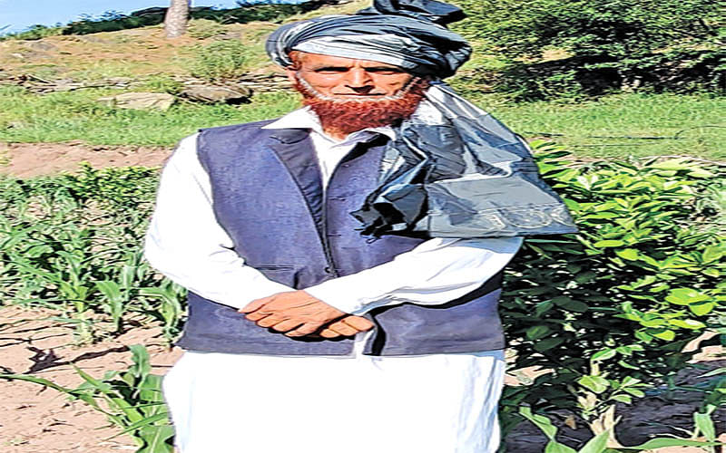 Aged Rajouri farmer sets example of integrated farming