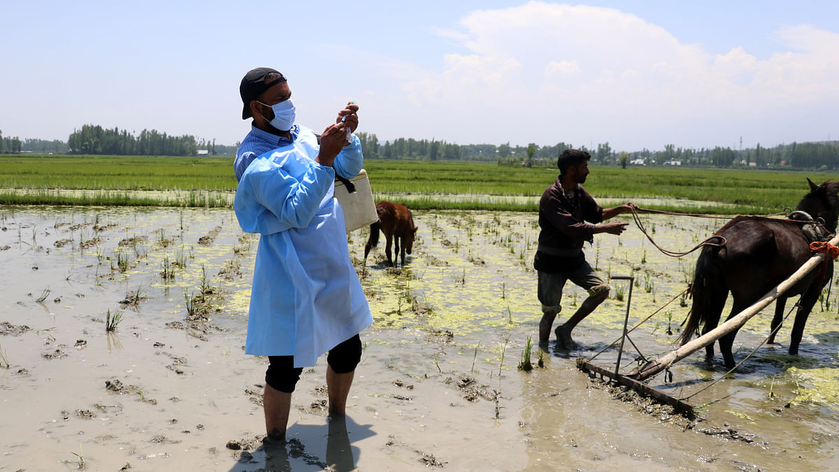 Time for flu shot in Kashmir