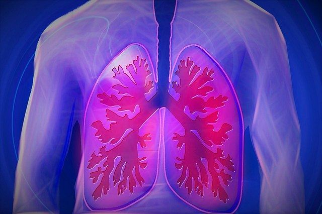 Air pollution adding to heart, lung diseases in Kashmir