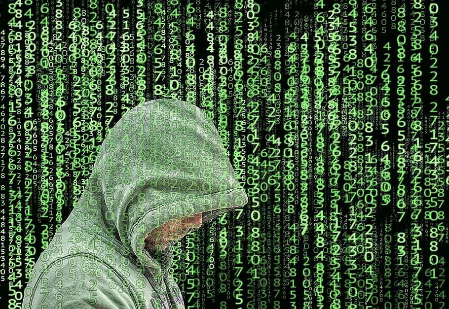 Digitizing the human