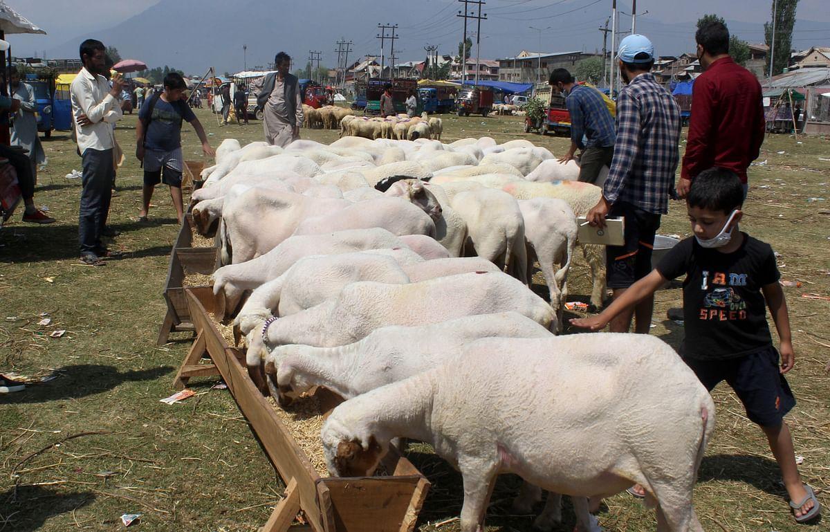 Slump in city markets: Eid sales yet to pick up