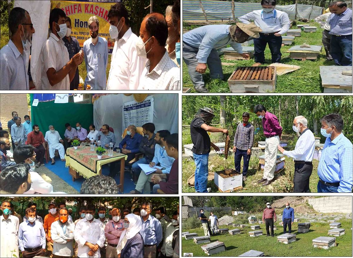 Apiculture Mapping Day held
