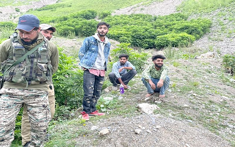 3 youth rescued after losing track on Sonamarg mountain peak: Police