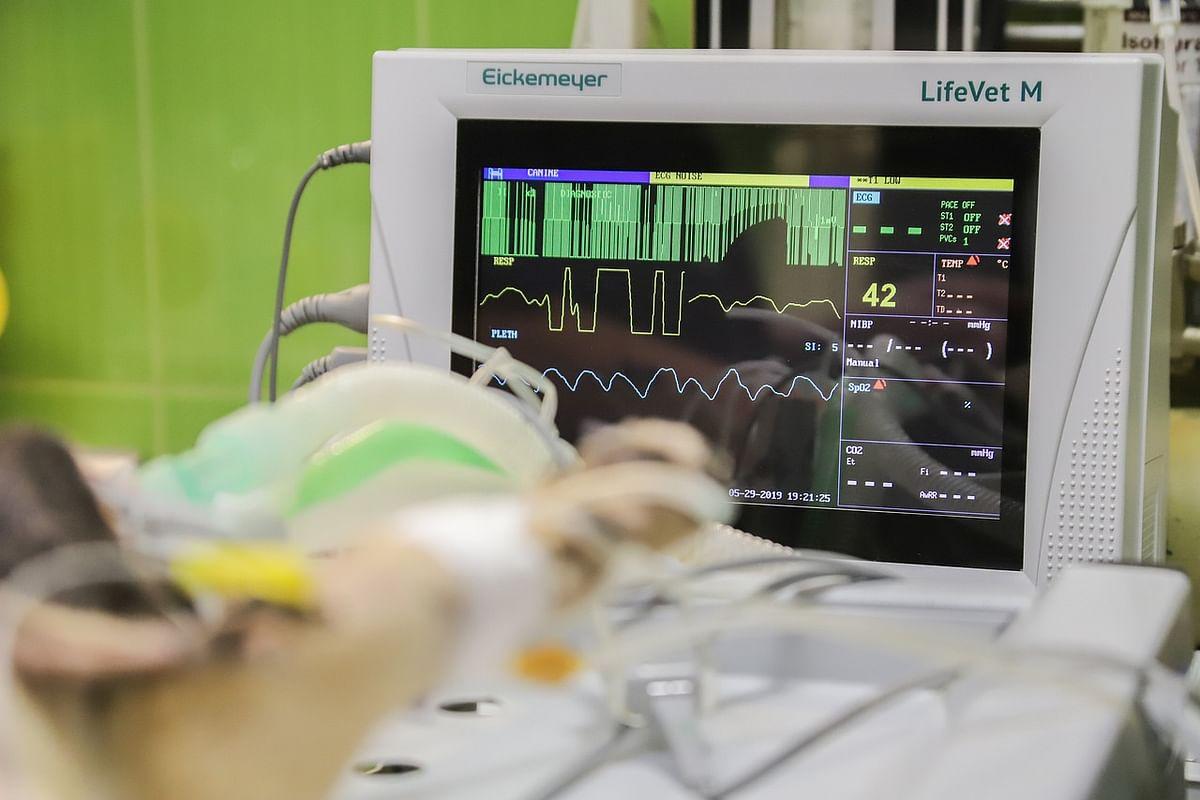 Delhi doctors save newborn with rare heart tumour