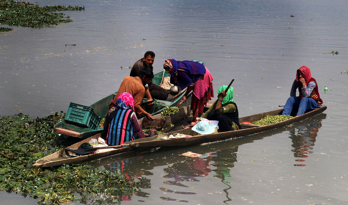 Women sell off the produce to local traders in Wular lake.