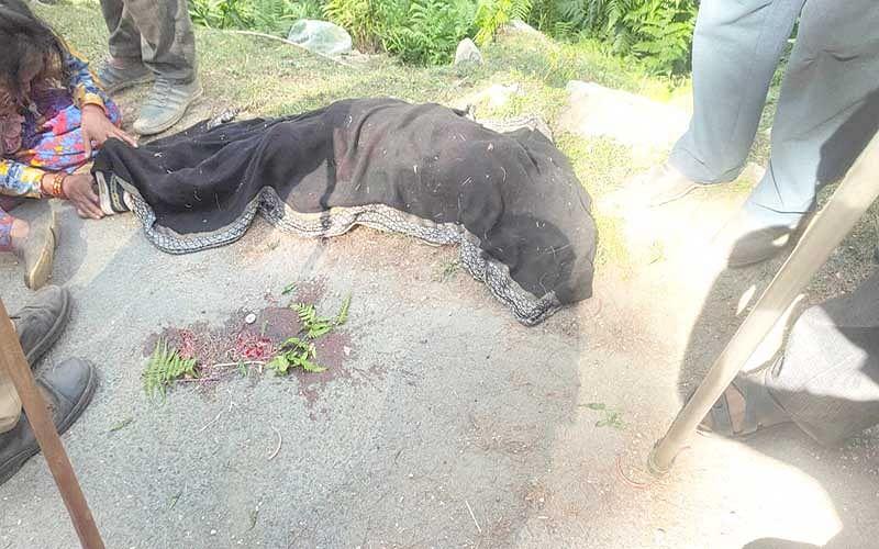 Minor girl crushed to death in Ramban