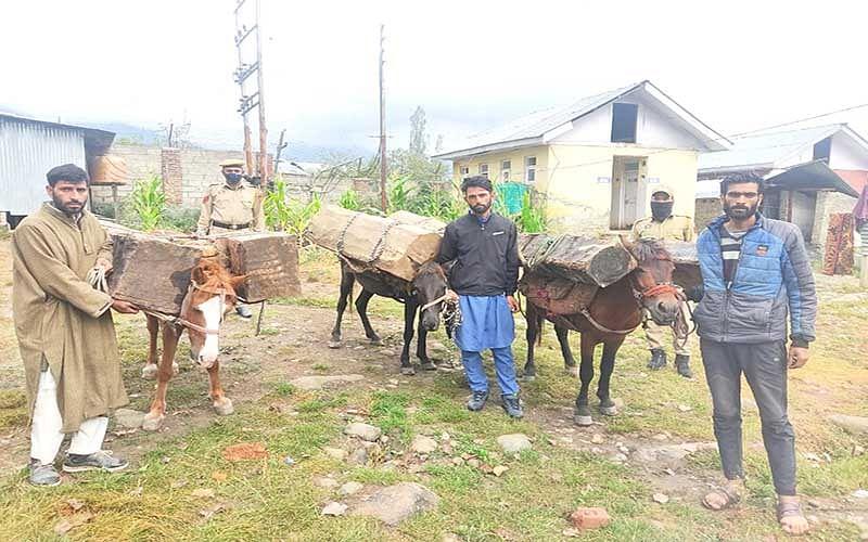 3 timber smugglers arrested: Police