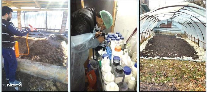 Pulwama siblings generate employment by manufacturing bio-fertilizers