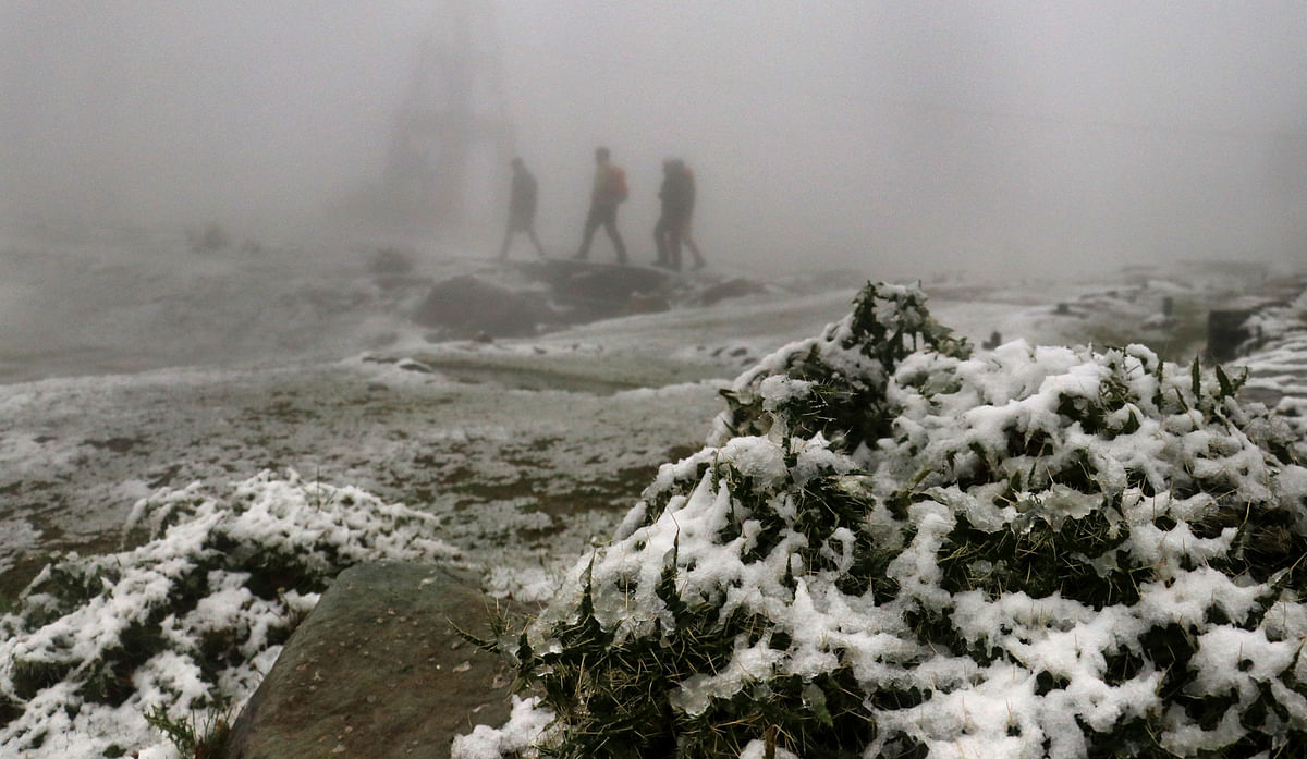 Kashmir upper reaches get season's first snowfall