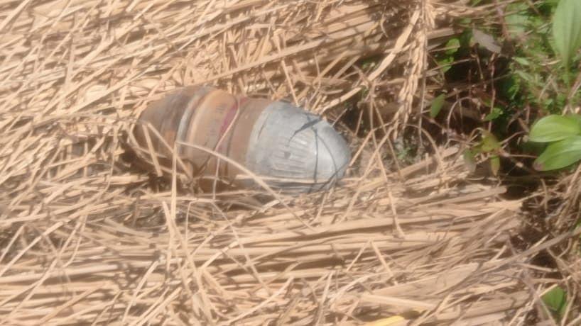 Security forces defuse grenade in south Kashmir's Kulgam