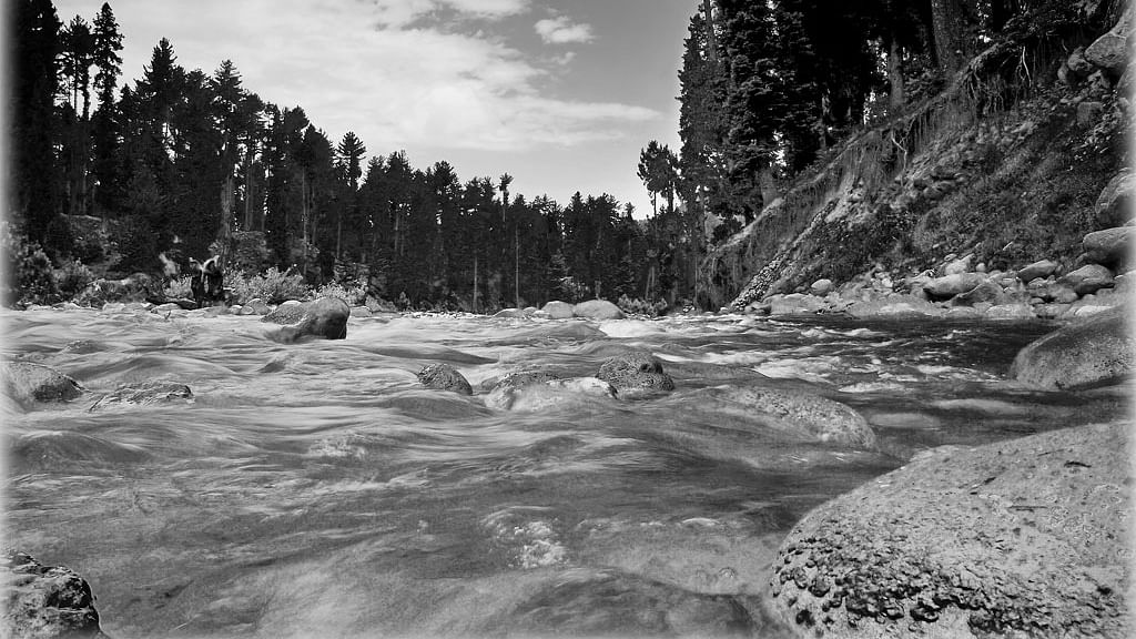 NGT constitutes committee to look into water quality of Doodh Ganga, Mamath Kull in Kashmir